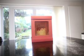 Extra Hoge taartdoos OLBAA met venster  25 x 25 x 35 (h) cm Pink