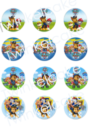 cupcakeprint paw patrol mix 1