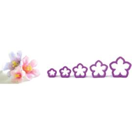 Kit Petunia uitstekers