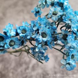 Blue Fever #2