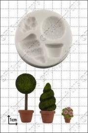 FPC Topiary