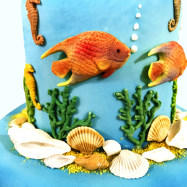 Fish, Seaweed and Coral silicone mould (Katy Sue Design)