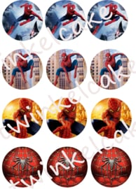 Spiderman Edible print cupcake