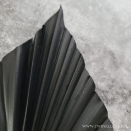 Palm Black