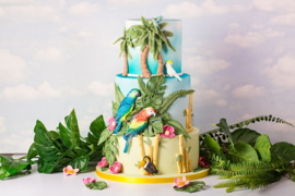 Tropical Birds by Karen Davies