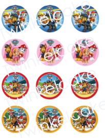cupcakeprint paw patrol mix 2