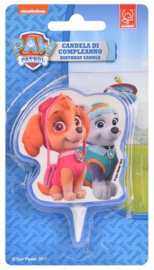 Paw Patrol 2D Candle Skye and Everst