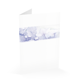 Blauwe hortensia in balk
