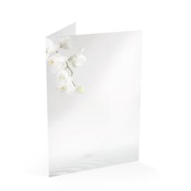 Witte Orchidee en Water