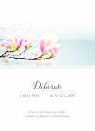 Magnoliatak in balk