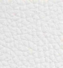 17. White