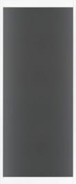 Skantrae SlimSeries Ultra Witte Binnendeur SSL 4200 Rookglas
