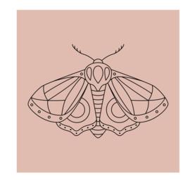 Vierkant 'Nachtvlinder'