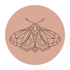 Cirkel 'Nachtvlinder'