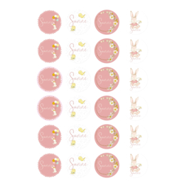 Etiket 'Konijnen meisjes' - oudroze -24 stuks