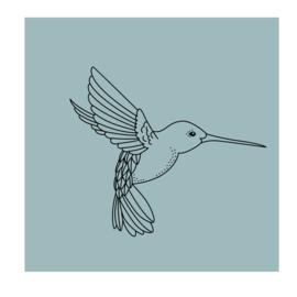 Vierkant 'Kolibrie'