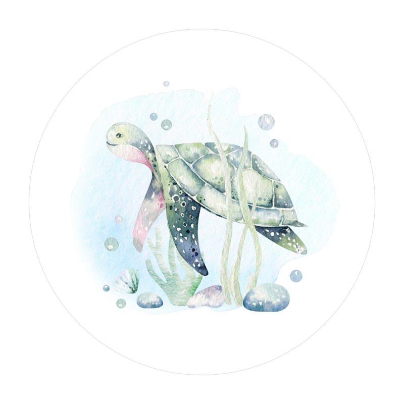 Cirkel 'Schildpad'