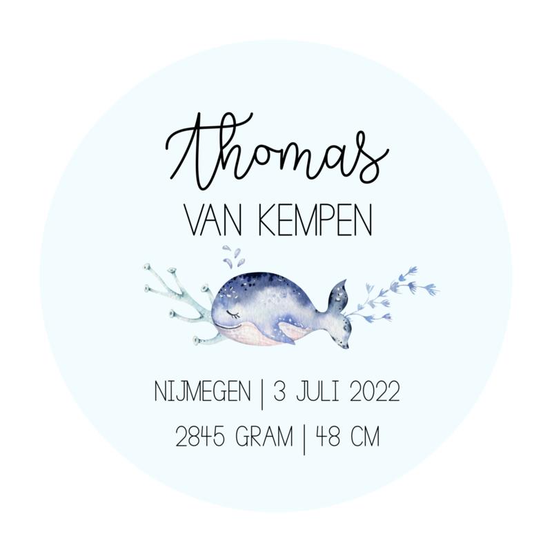 Cirkel 'Onderwaterdieren- geboorte'