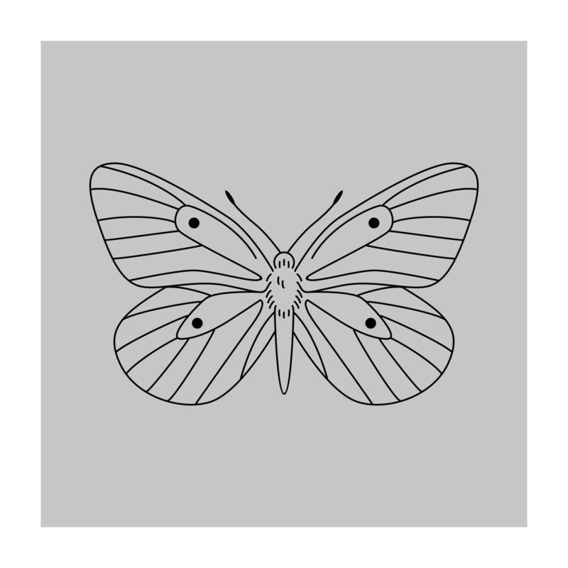 Vierkant 'Vlinder'