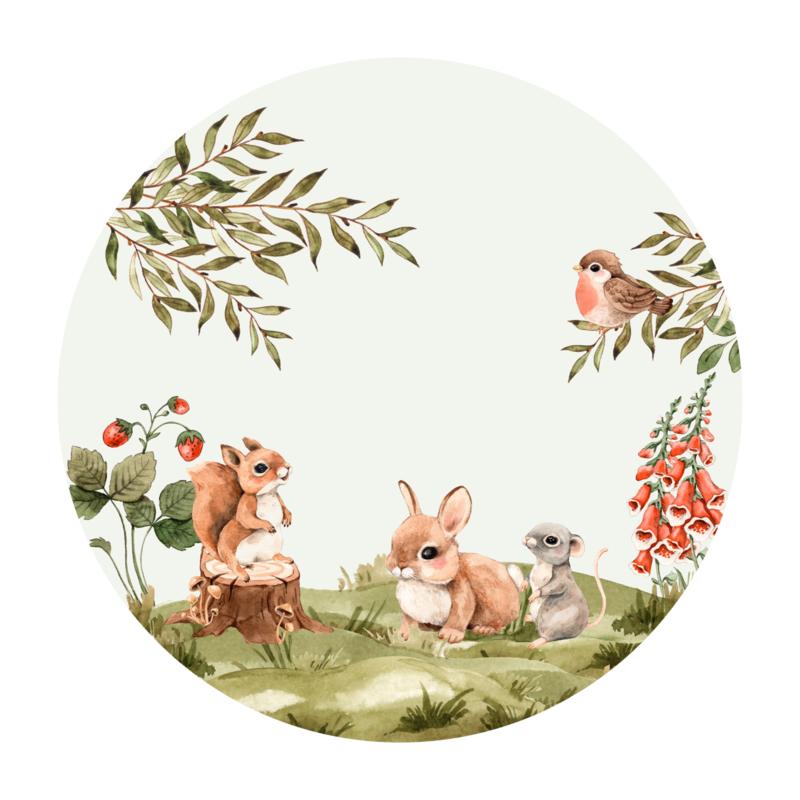 Cirkel 'Bosdieren' - 1