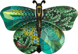 Miho Magda Butterfly M