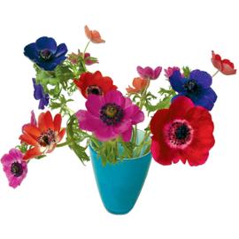 Flatflower Anemoon blauwe vaas