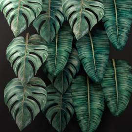 Miho Leaf  Tropic