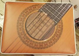Krut kratkussen gitaar licht