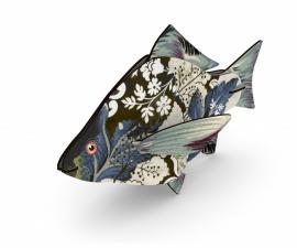 Miho Fish Carpe Diem