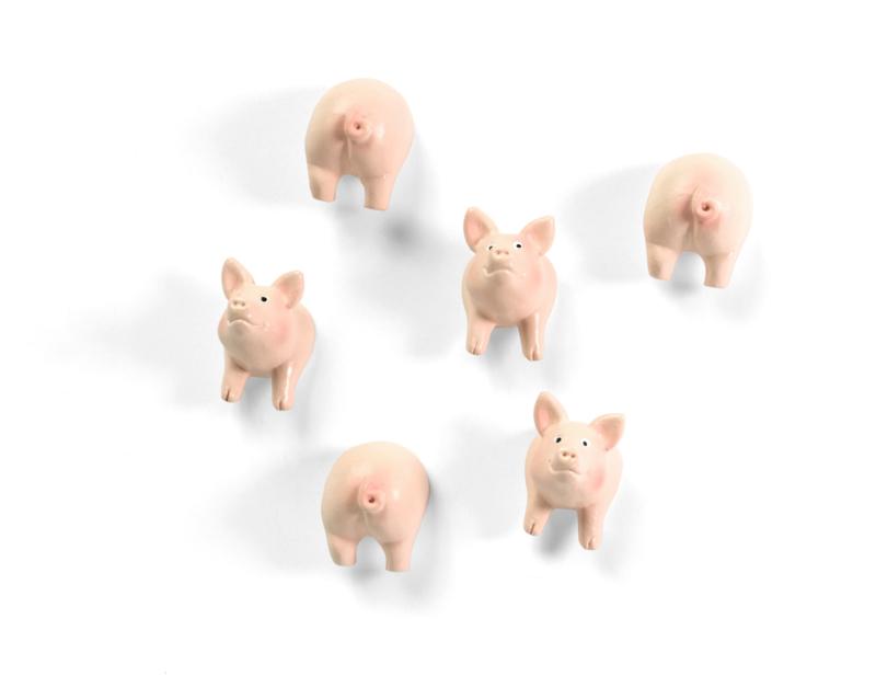 Piggy magnets