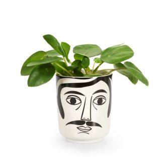 Jar Mr. Hamilton