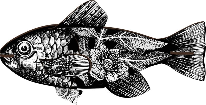 Miho Fish Vertigo
