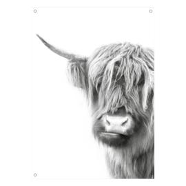 Tuinposter Schotse Hooglander grijs