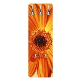 Design Kapstok; Gerbera in Orange