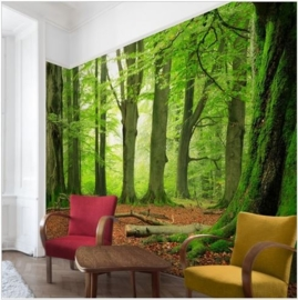 Vliesbehang Mighty Beech Trees (vanaf)