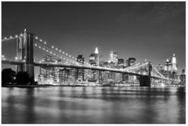 Vlies Fotobehang; Nighttime Manhattan Bridge II (vanaf)
