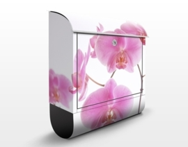 Design Brievenbus Mellow Orchids