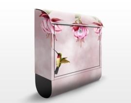 Design Brievenbus Kolibri