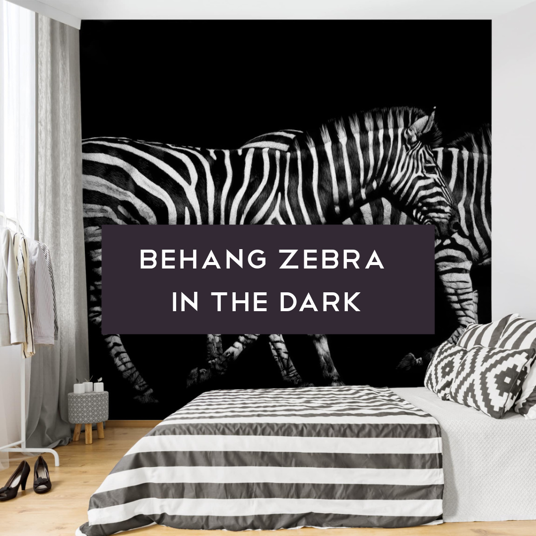 Behang zebra in the dark link in bio Instagram