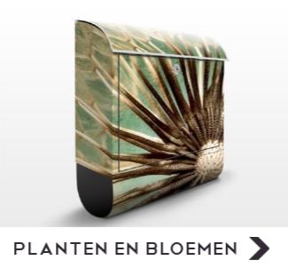 Brievenbus met afbeeldingen van planten en bloemen