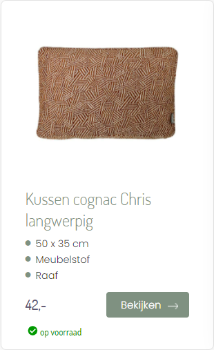Kussen Cognac Chris langwerpig Raaf Ookinhetpaars