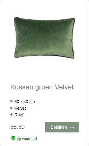 Kussen Groen velvet sierkussen Raaf Ookinhetpaars