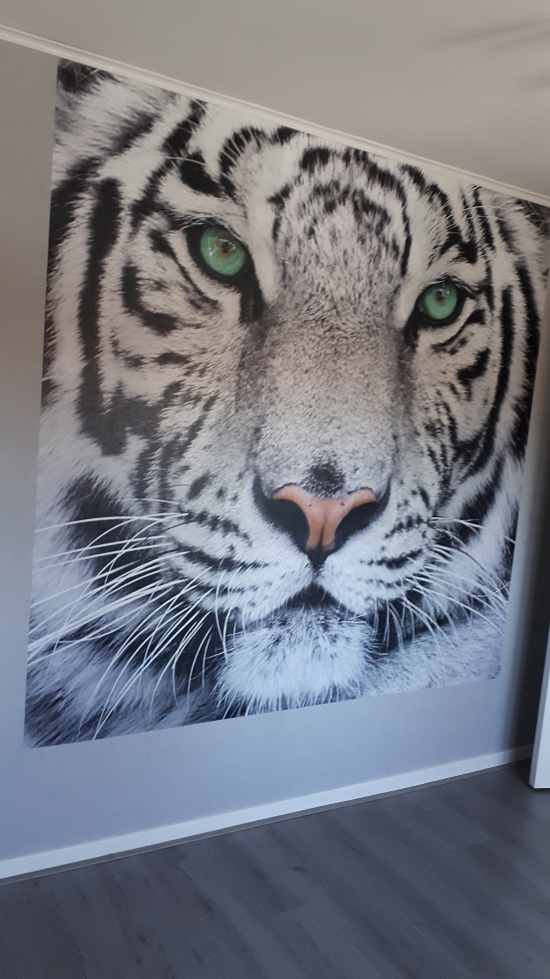Vliesbehang met witte tijger