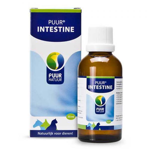 PUUR Darm/Intestine 50ml