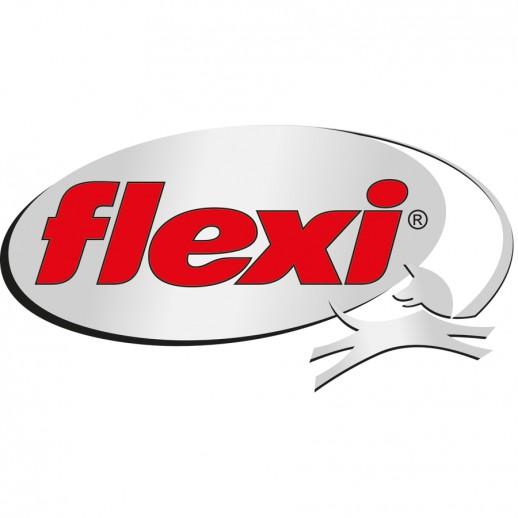 flexilogo.png