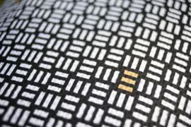 Wielrenblad-wielershirt