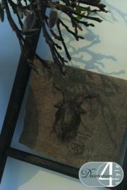 Linnen doekje Geit 30x45 cm