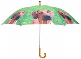 Ridgeback honden paraplu