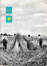 Borculo Schets van de economische ontwikkeling - Heitling, Willy H.