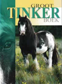 Groot Tinker boek - Miranda Sauter, Rob de Beus